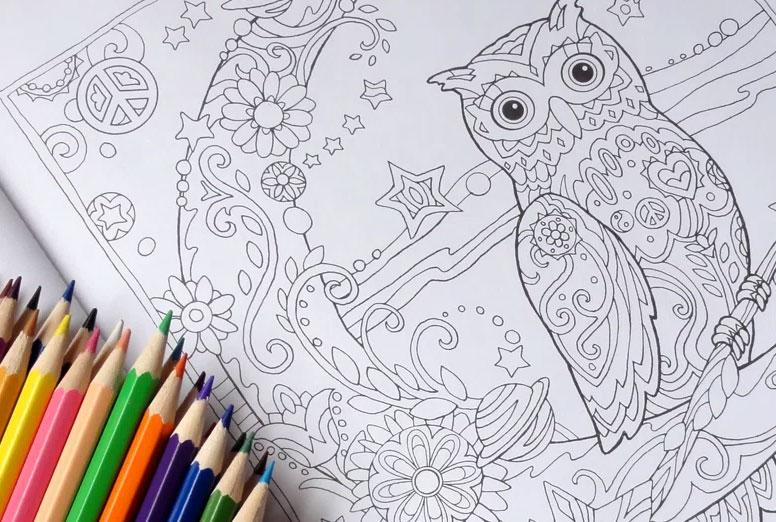 Раскраски и блокноты