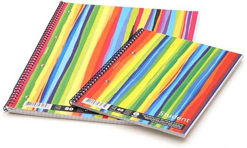 Дневники, тетради, альбомы для школы