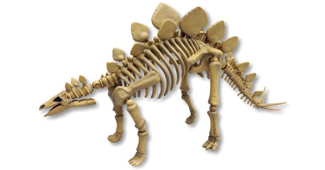 Скелеты динозавров и наборы ископаемых