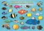 Пазл Тропические рыбы 1000 эл 6000-1173 0