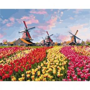 Картина по номерам Красочные тюльпаны Голландии 40 х 50 см КНО2224 Идейка