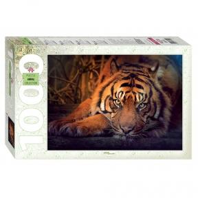 Пазл Сибирский тигр 1000 эл
