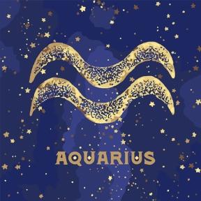 Картина по номерам Знак Зодиака Водолей з краской металлик 50 х 50 см Идейка КН9521