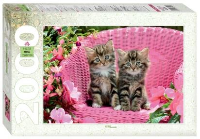 Пазл Милые котята 2000 эл Step Puzzle