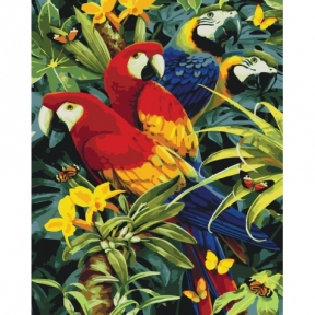Картина по номерам Разноцветные попугаи 40 х 50 см КНО4028 Идейка