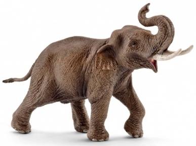 Азиатский слон (самец) - игрушка-фигурка, Schleich