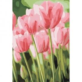 Картины по номерам Весенние тюльпаны 35 х 50 см Идейка КНО2069