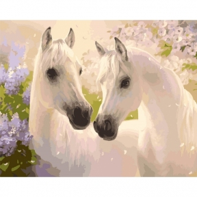 Картины по номерам Пара лошадей 40 х 50 см КНО2433 Идейка