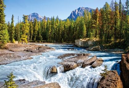 Пазл Река Атабаски, Национальный парк Джаспер, Канада, 1500 эл. 150762