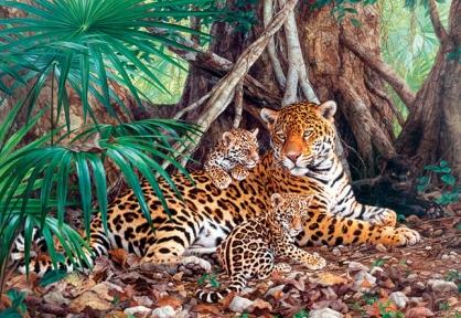 Пазл Ягуары в джунглях 3000 эл 300280